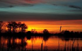 Обои небо, деревья, закат, оранжевый, тучи, река, камыши