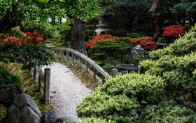 Картинка деревья, мост, камни, сад, кусты