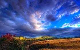 Обои небо, трава, облака, горы, холмы, куст