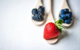 Картинка ягоды, черника, клубника, fresh, ежевика, berries