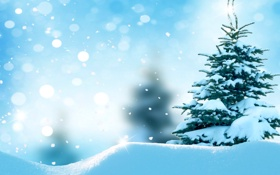 Картинка зима, лес, снег, снежинки, елка, nature, winter