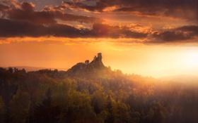 Обои замок, руины, рассвет, природа, лес, возвышенность