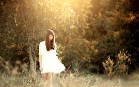 Обои платье, ножки, восточная девушка