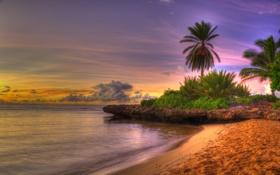 Обои landscape, hdr, beach
