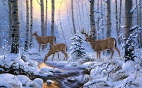 Обои зима, лес, снег, деревья, ручей, арт, олени