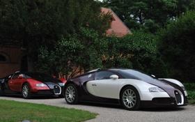 Картинка Bugatti, Veyron, EB 16.4, 1001hp