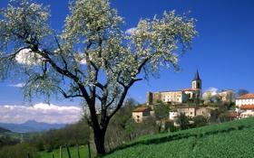Картинка поле, небо, горы, город, дом, дерево, башня