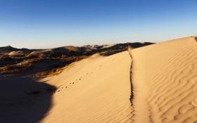 Картинка тень, дорожки, горизонт, дюны, пустыни, голубое небо