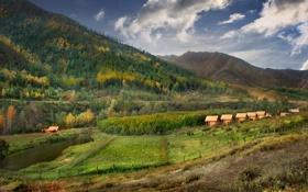 Картинка путешествие Мобиба, Турбаза Янтарный сад, Онгудай, река Большая Ильгумень, Mobiba, Горный Алтай