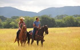 Картинка поле, горы, фильм, обои, женщина, шляпа, лошади