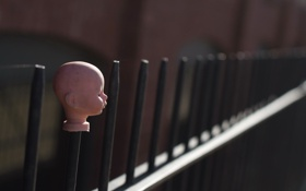 Обои забор, голова, кукла