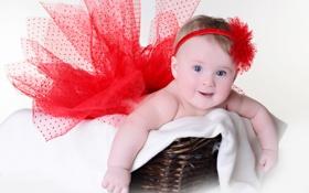Обои Little girl in a red skirt, Маленькая девочка в красной юбке, маленькая радость, красный цветочек, ...