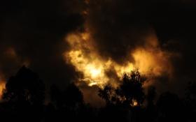 Обои закат, облака, небо, солнце, силуэты, золотой, дереья