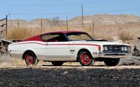 Обои 1969, передок, Muscle car, Мускул кар, Mercury, Меркури, Cyclone