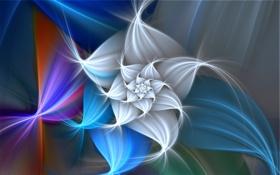 Обои цветок, свет, узор, лепестки, объем