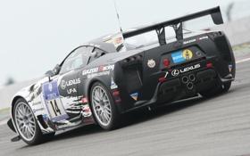 Обои асфальт, Lexus, Car, Race, лексус, задняя часть, LF-A