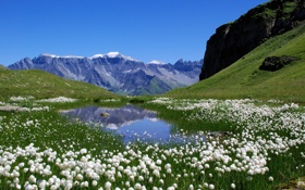 Картинка лето, пейзаж, цветы, горы, озеро, Природа