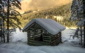 Обои зима, лес, снег, деревья, ель, бревна, домик