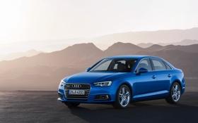 Обои Audi, ауди, quattro, TFSI, 2015