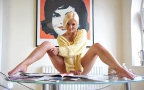 faye,модель,блондинка,стол,картина,свитер,желтый,улыбка обои