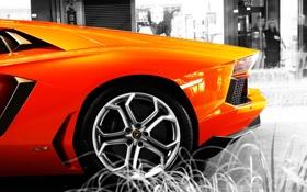 Картинка auto, cars, lamborghini, сars wall, aventador, ламборгини, lp700-4
