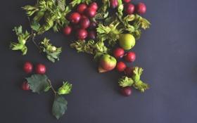 Обои food, fruits, pears, vegetables, healthy