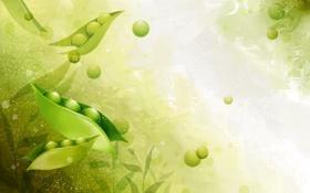 Картинка свет, зеленый, горошек, листики, стрючек