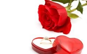 Обои красный, сердце, Роза, кольцо