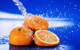 Картинка вода, капли, брызги, обои, апельсин, натюрморт