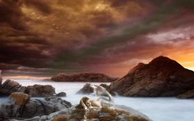 Картинка море, небо, девушка, птицы, тучи, океан, скалы
