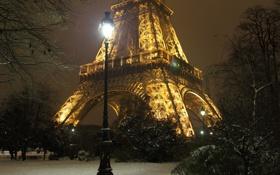 Картинка деревья, ночь, city, город, lights, огни, Франция