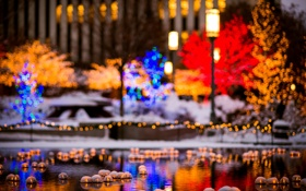 Обои США, USA, пруд, фонари, Utah, боке, Юта