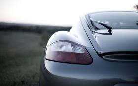 Картинка Cayman, зад, Porsche, фара