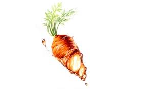 Обои капли, Вода, морковь, рисунок