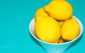 Обои цвет, тарелка, цитрус, фрукты, лимоны