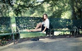 Картинка парк, скамья, Olivia