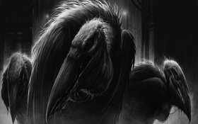 Картинка птицы, крылья, голова, перья, клюв, стервятники