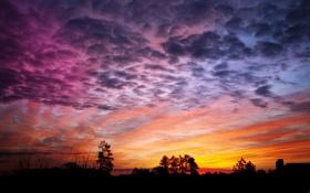 Картинка небо, облака, деревья, дом, силуэт, зарево
