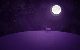 Обои valentine, романтика, фиолетовая планета, звёзды, сердца, луна
