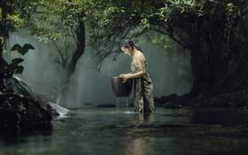 Обои лес, природа, озеро, женщина