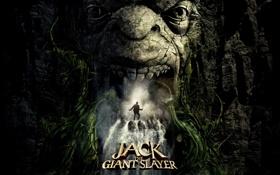Картинка водопад, пещера, Jack the Giant Slayer, Джек – покоритель великанов