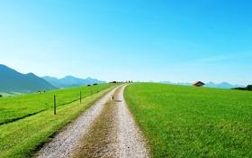 Картинка домики, трава, забор, дорога, лето