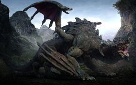 Обои дракон, крылья, фантастика, рога, Darok