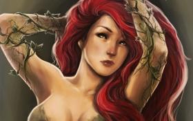 Обои взгляд, девушка, растения, арт, красные волосы, DC Comics, Poison