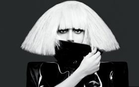 Картинка черно-белое, певица, lady gaga, леди гага