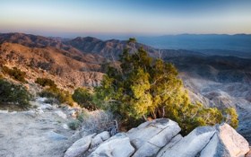 Картинка горы, камни, пустыня, кусты, California, Joshua Tree National Park, US.