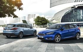Картинка Ford, Focus, 2014, форд. фокус