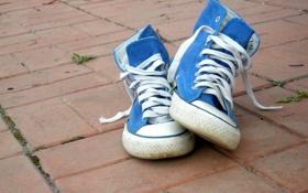 Обои асфальт, стиль, отдых, обувь, кеды