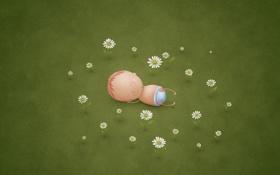 Обои цветочки, владстудио, Новорожденный