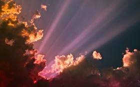 Обои небо, солнце, облака, лучи, свет, надежда